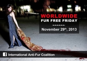 Fur Free Friday