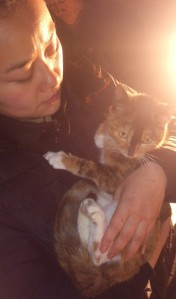 Su Jing Nan with a rescued cat