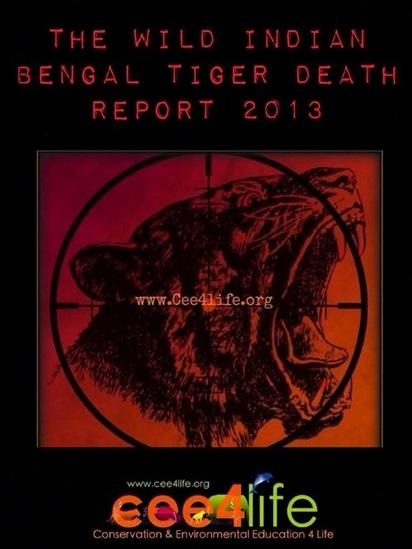 Bengal tiger death report