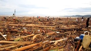 Flash flood caused partly by illegal logging near Iligan City