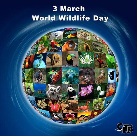 World_Wildlife_Day_poster